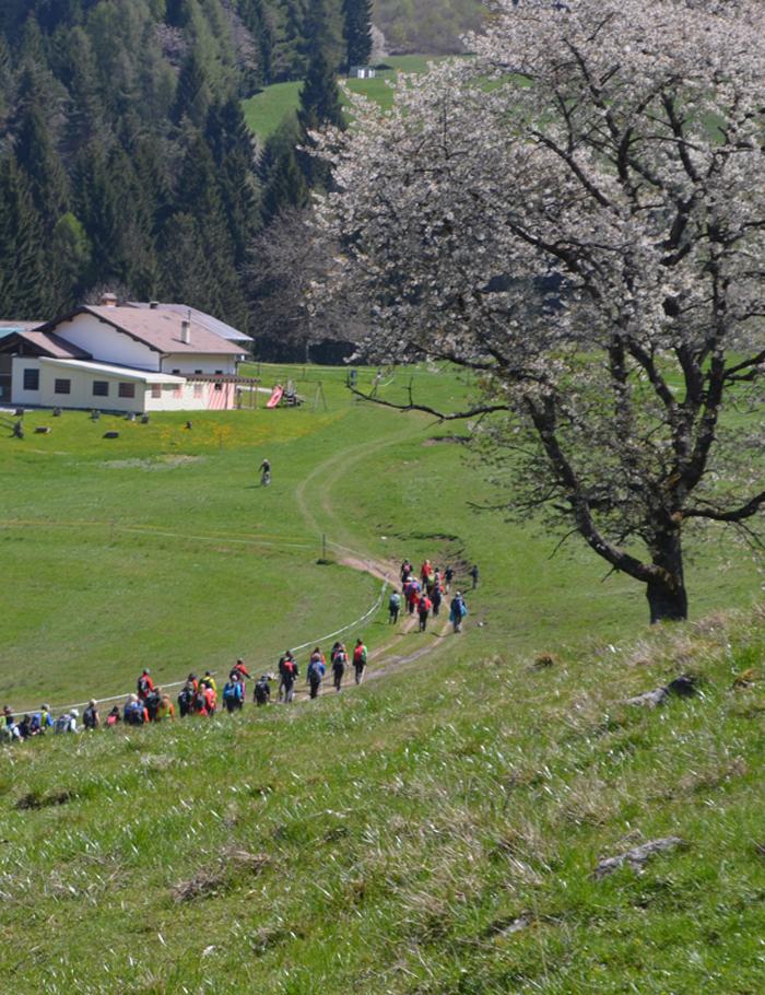 escursione2